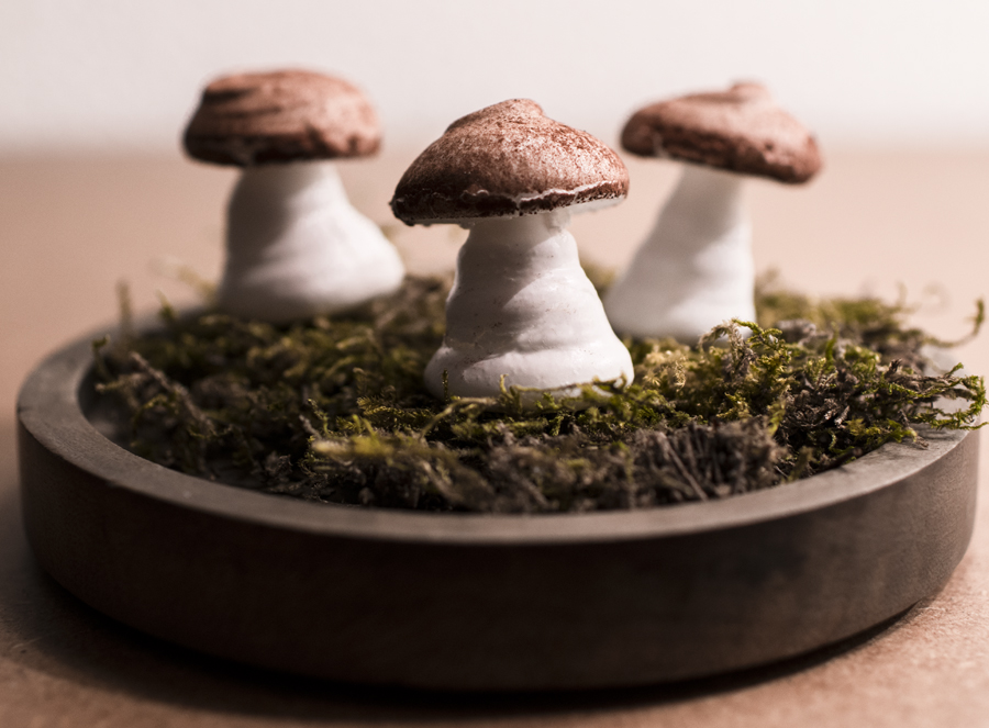 Can Mushrooms Be Stored At Room Temperature